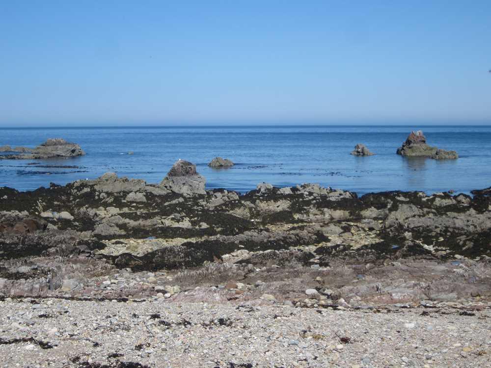 Beautiful Scottish coast