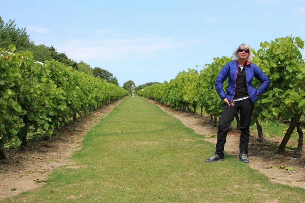 What to see on Jersey: La Mare vineyard