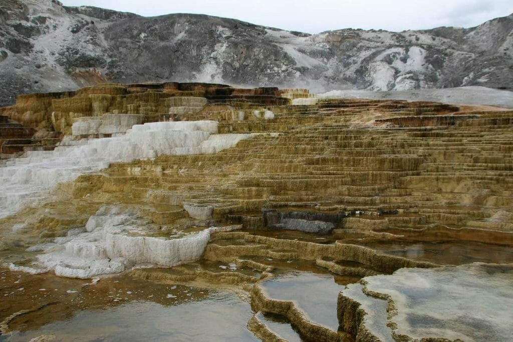 The terraces at Mammoth Hot Springs