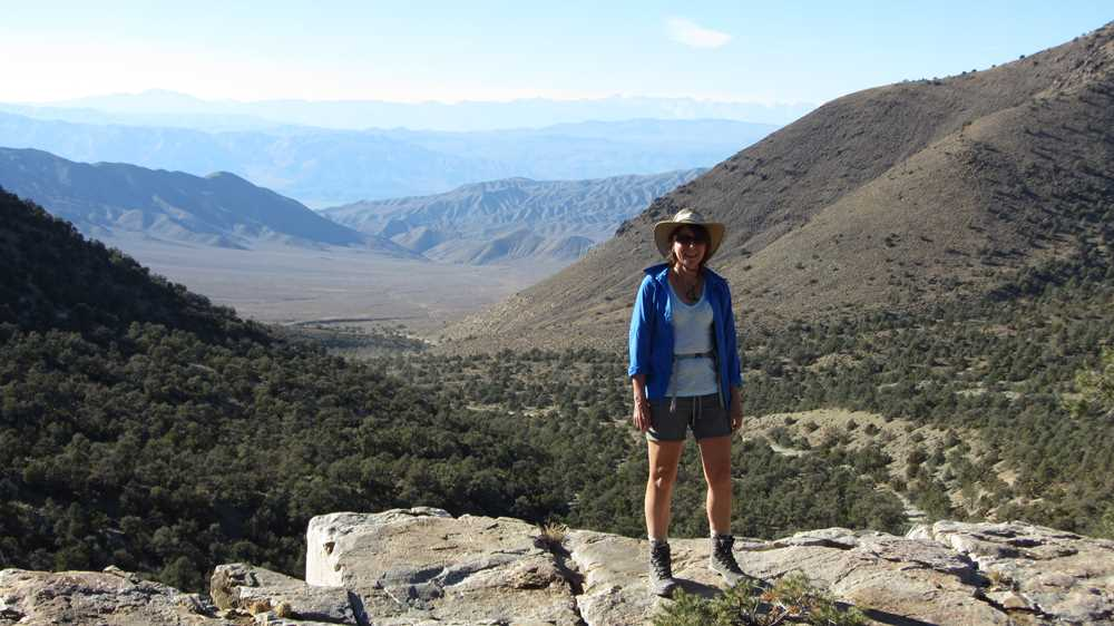 The view from Wildrose Peak