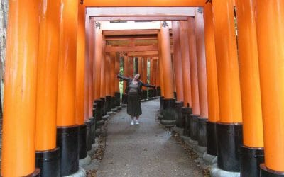 The Highlights of Japan: where to go and what to see