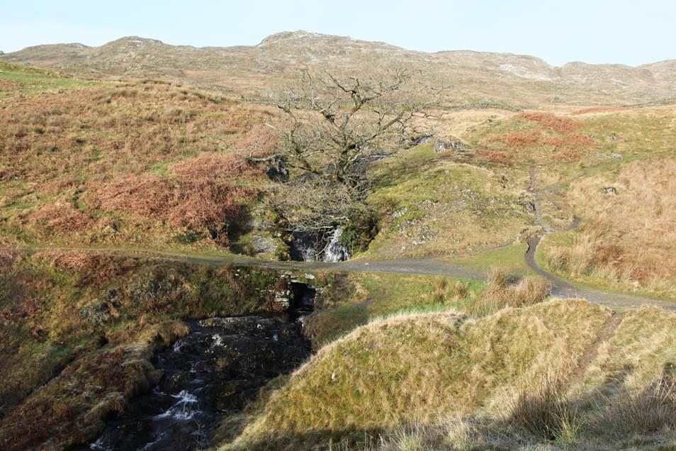 Trail up Wansfell Pike