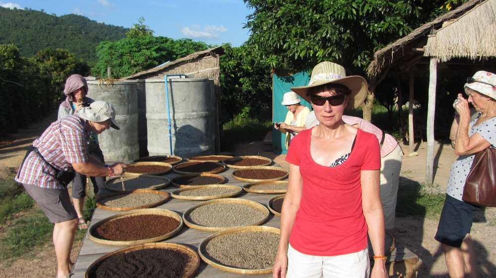 Pepper corns drying in the sun