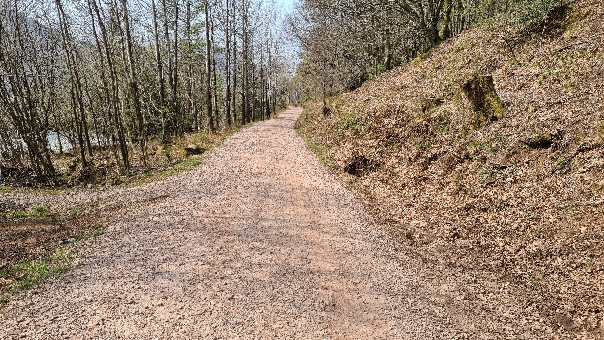 Forestry path along the side of Ennerdale Water